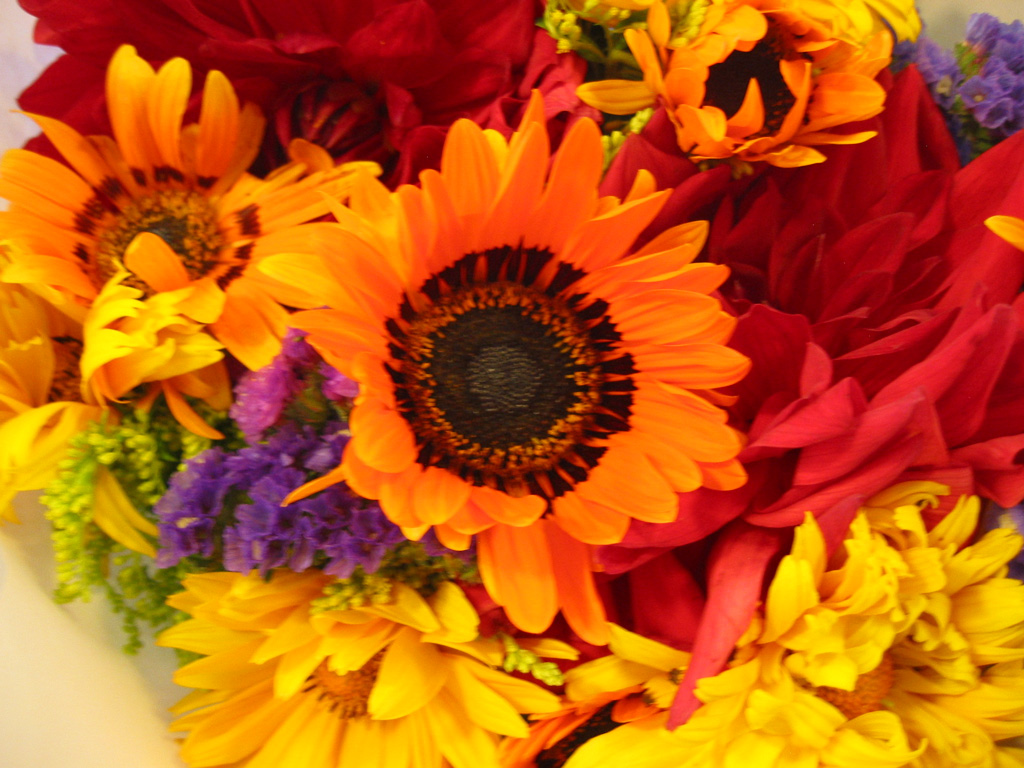 Flower Photos Free Flower Arrangement