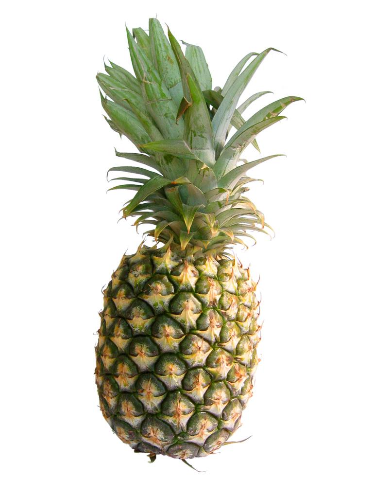 تعريف الأناناس Pineapple-01